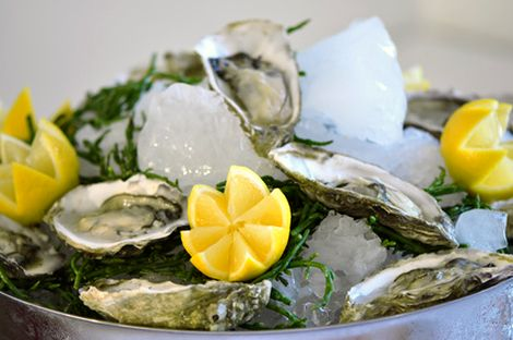 Schale mit Austern