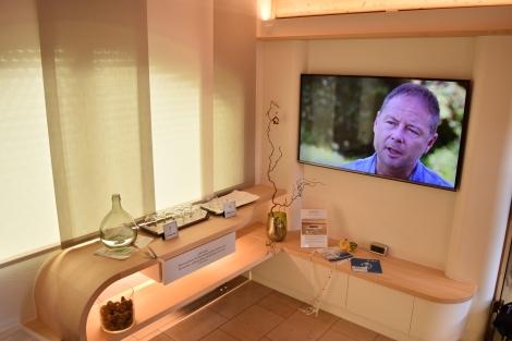 Harald Granzer, Qi-Motion-Lounge Hotel Auerhahn